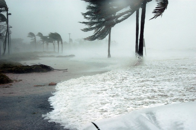 How Your Business Can Help Employees Impacted By Hurricanes